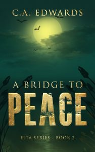 A Bridge to Peace Cover